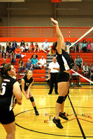 20140828_Mancelona V VB v Ellsworth_0009