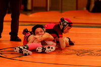 20170115_War of the Roses Ladies Wrestling_0008